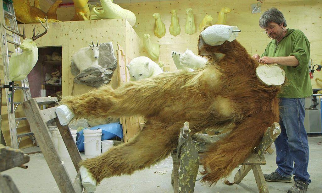 Ken Walker, star of Big Fur